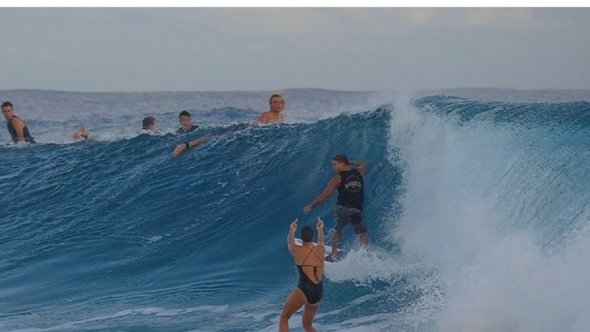 A woman surfer is riding her surfboard on a wave in the ocean and a male surfer is on the same wave.