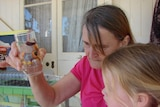 Gloria Park and grand-daughter Sophie inspecting a glass of water