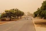 Powerlines strewn across a suburban street