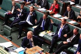 One woman, wearing a red jacket, is visible amongst her male Liberal colleagues.