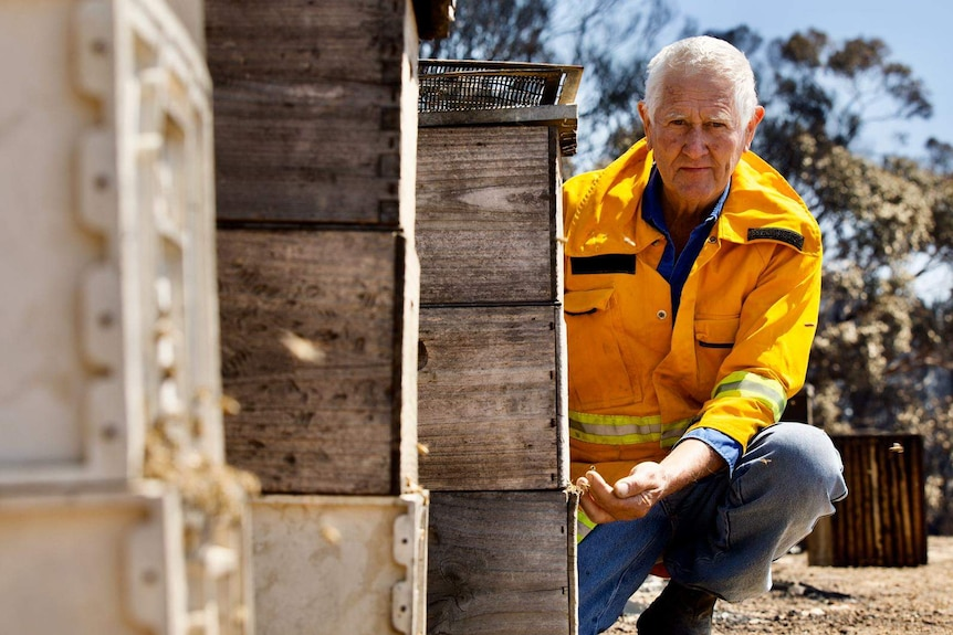 A man in a yellow jacket squatting next to beehives