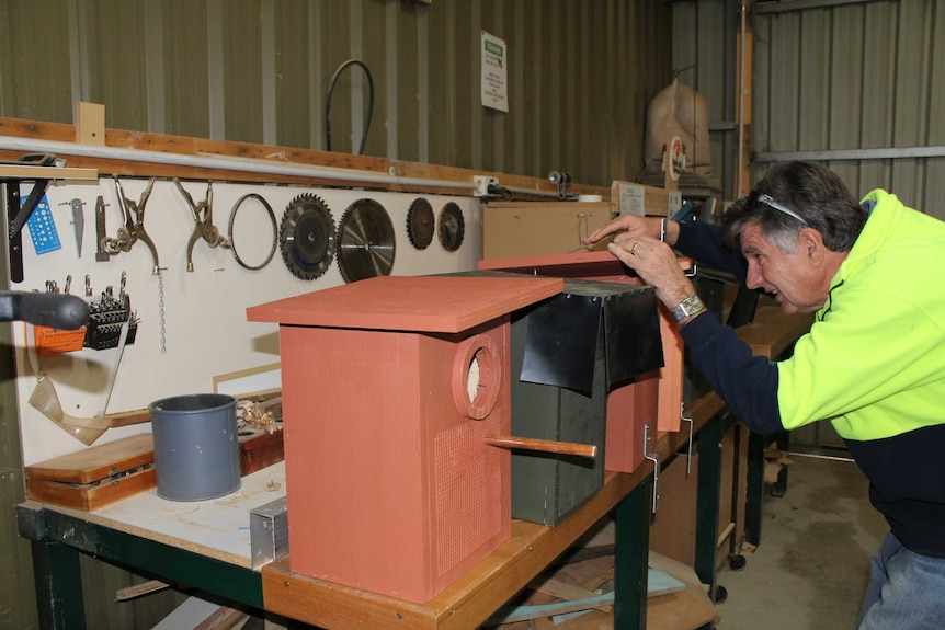 Bruce Dyce inspecting a nest box inside the Thurgoona Men's Shed workshop