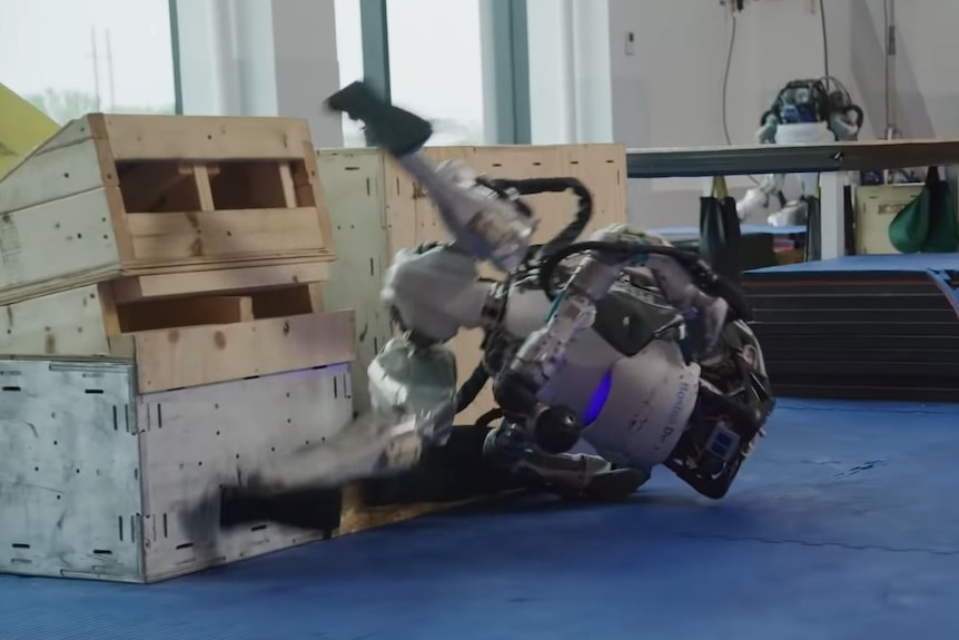 A robot falls over in an obstacle course.