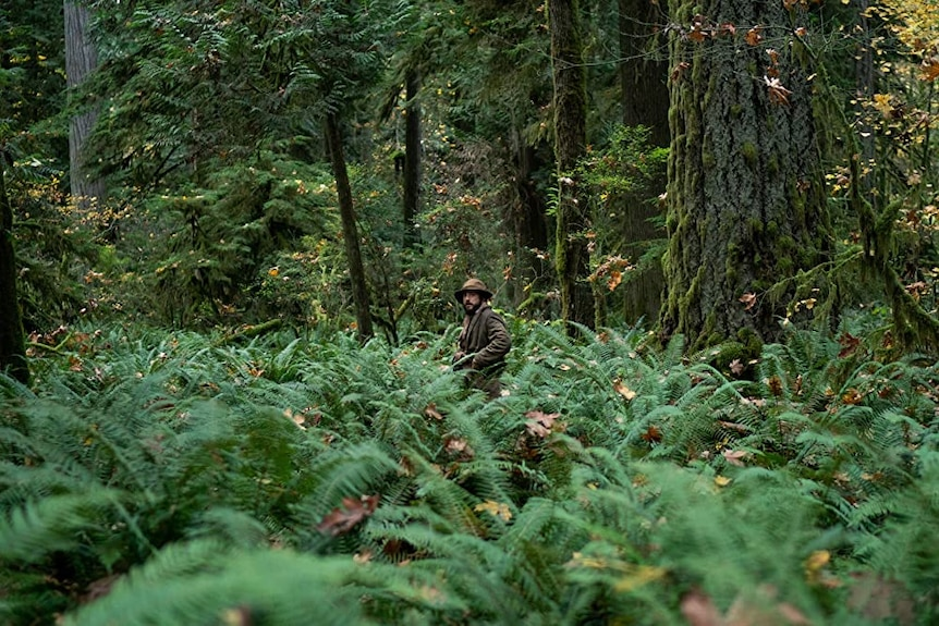 Film still of John Magaro as Cookie alone in the woods in First Cow