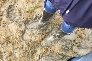 The muddy aftermath of the flood — people stand in mud wearing jeans and gumboots.