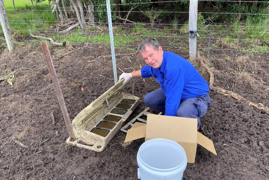 David Brill places the Hoggone Tray in a bait box.