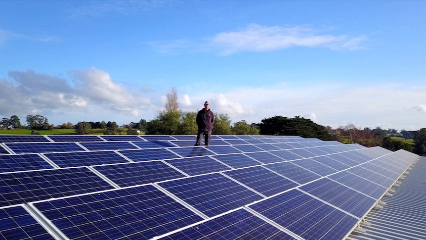 A woman stands on a solar grid on a shed roof