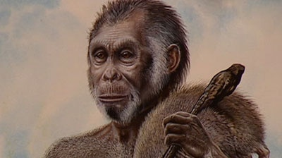 Scientists claim new evidence on the extinct hobbit will lead to more human species discoveries.