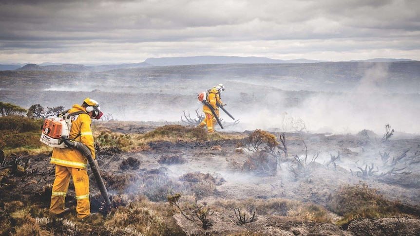 NSW Fire crews using leaf blowers to remove fuel from a fire ground