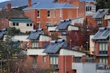 Solar panels on top of homes in Hobart.