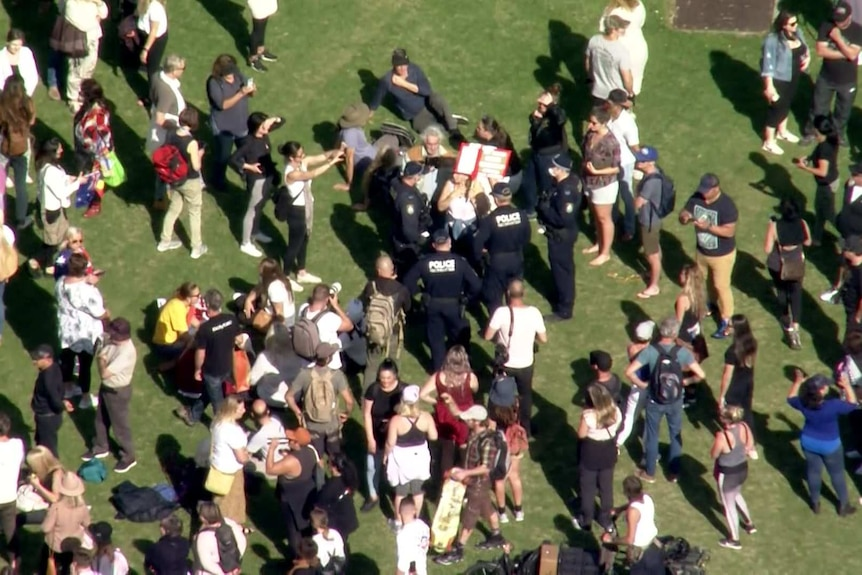 Crowd of people, with police in the middle, stand on grass