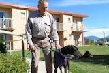 Man walks a greyhound