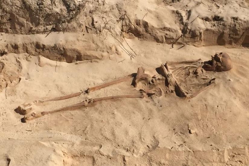 Batavia skeleton unearthed