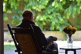 An elderly man sits in a rocking chair facing away into a sunlit garden, next to a vase of flowers on a table.
