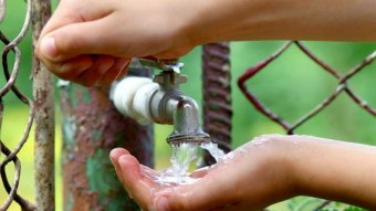 Hands cup water as it flows from a tap.