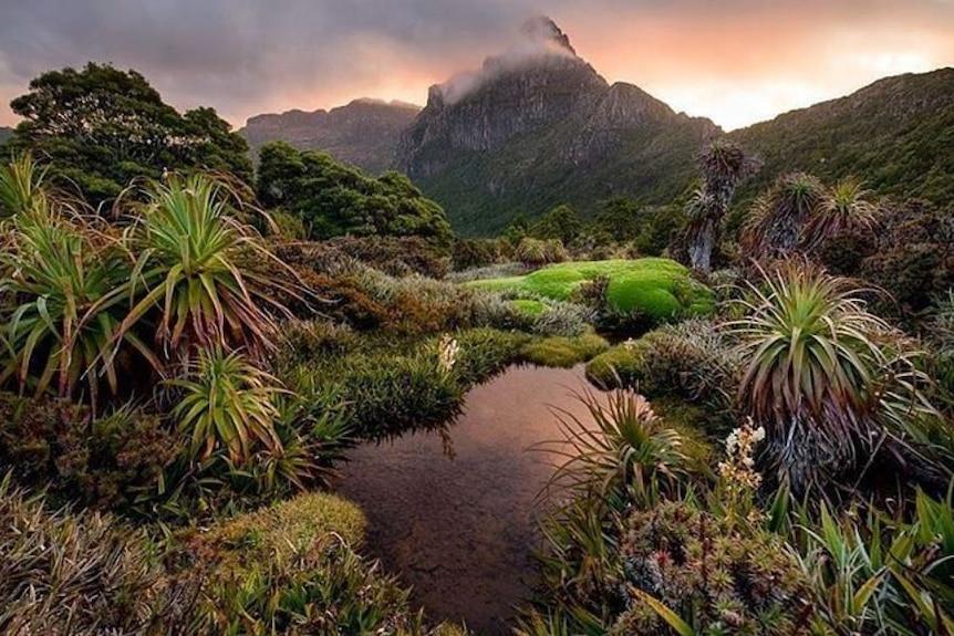 Base of Mount Anne, Tasmania.