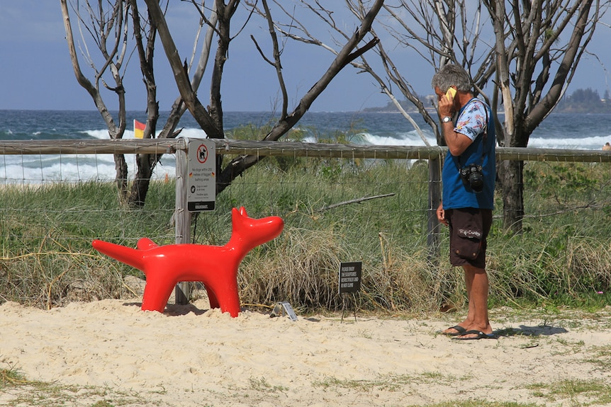 A red dog relives itself on fence at Swell Sculpture Festival, Gold Coast