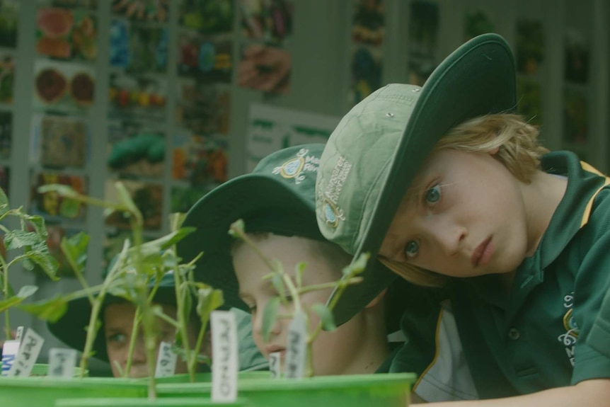 student wearing large green hat inspects plant in bright green pot