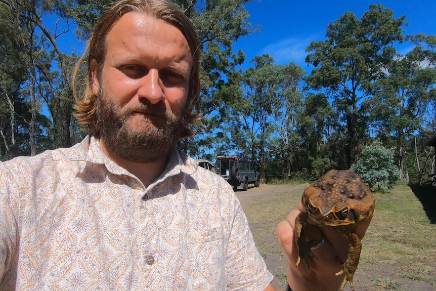 A man holding a cane toad.