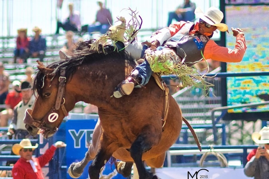 A rodeo rider on a bucking horse