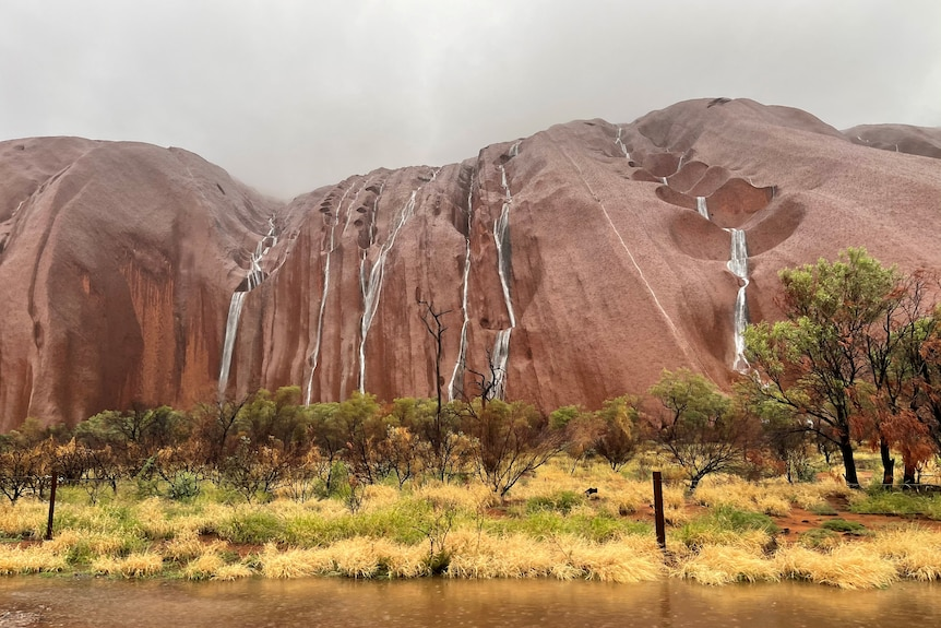 Streams of water running down Uluru in a wide image showing the rock from top to bottom