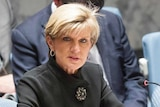 Julie Bishop chairs meeting at UN