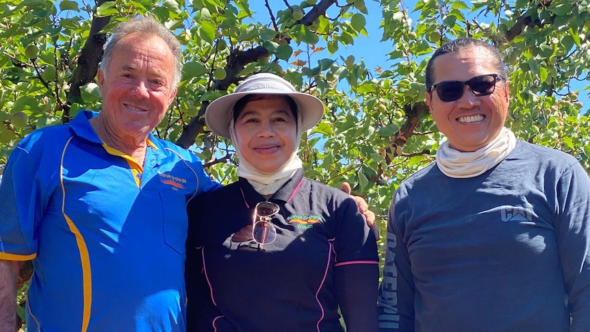 Three people stand in a summer fruit orchard looking happy