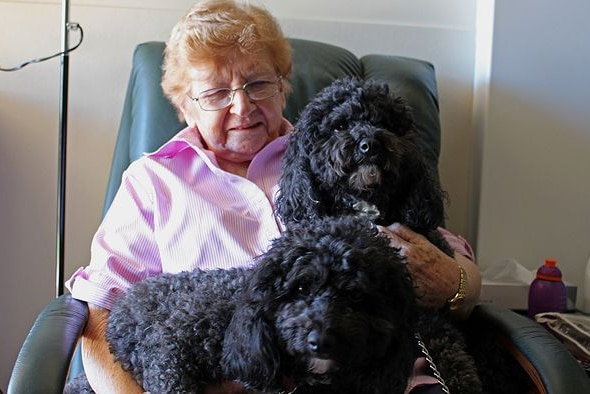 A new 'breed' of practitioner is working in nursing and aged care homes