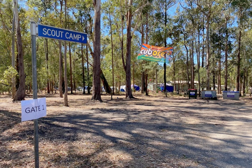 Scout camp in the bush