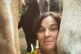 Woman with brown hair and yellow top is surrounded by three horse
