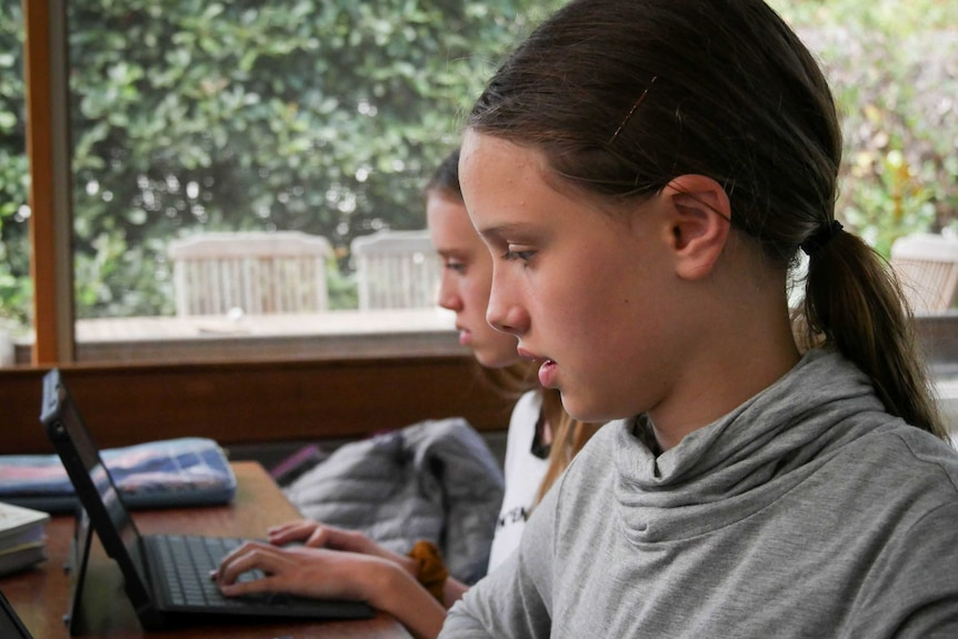 A close up of Amelie Brown working on her computer, wearing a grey top and long brown hair in a pony tail.