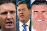 Mr Springborg and Mr Nicholls and Mr Mander, who are reportedly preparing a unity ticket to challenge the leadership.