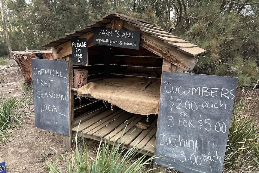 An wooden farm stand with blackboard signage sating 'farm stand', 'cucumbers' and 'please pay here' stands empty by roadside.