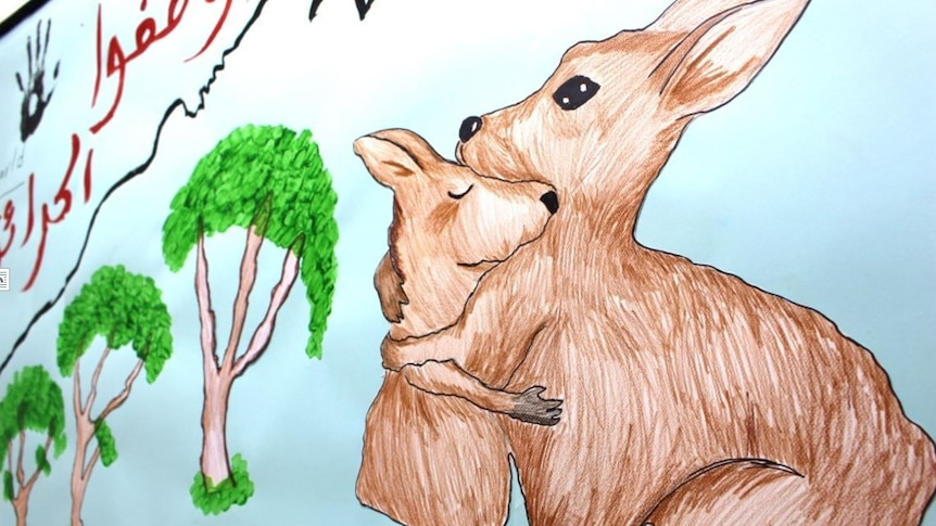 A hand-drawn picture of a kangaroo, with arabic writing wishing victims well