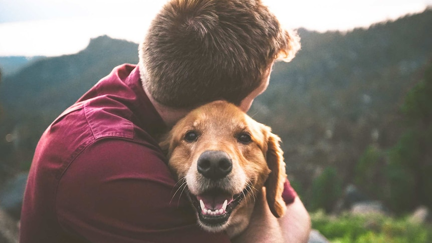 Person with short hair hugging a golden brown dog, who is looking at the camera for a story about how to handle a bad day.