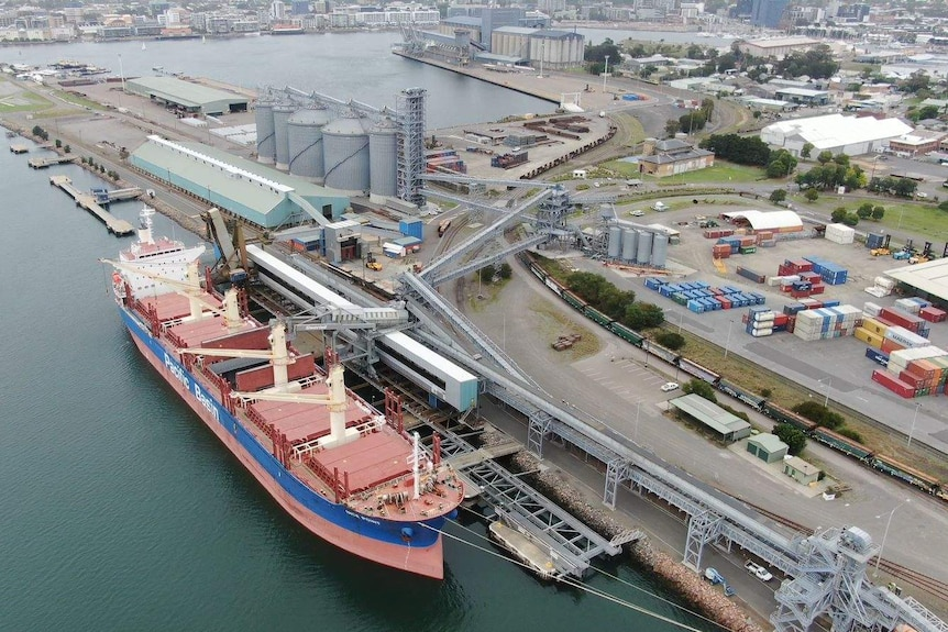 An aerial shot of a large cargo ship docked alongside a grain loader, with the harbour and Newcastle city in the background.
