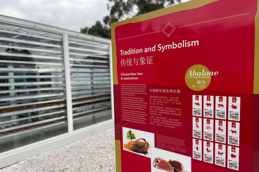 Abalone signage for Chinese tourists