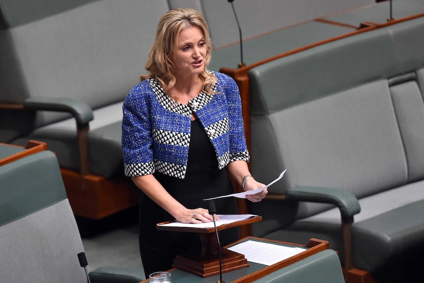 Melissa Parke stands as she speaks in the House of Representatives at Parliament House in Canberra.