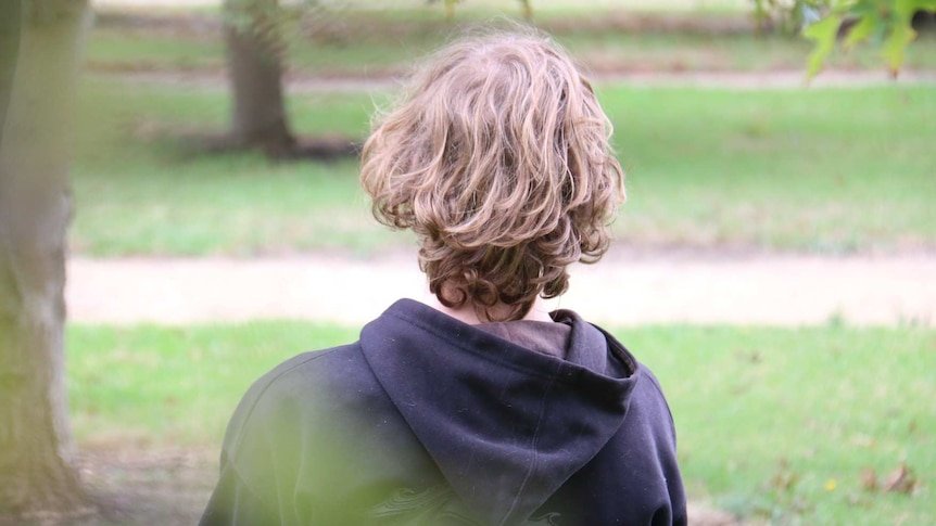 A boy with medium length brown hair who is wearing a hoodie is shown in a park from behind.