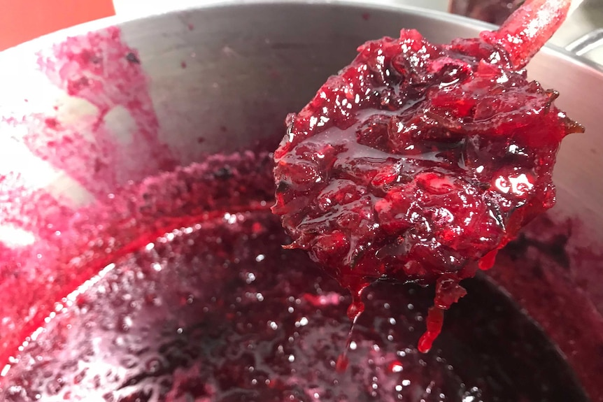 A closeup of rosella jam fresh from the kitchen