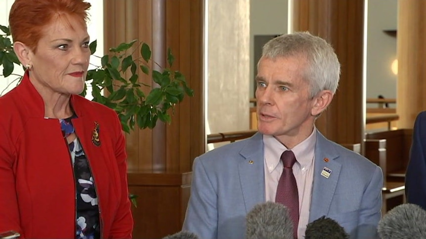 Malcolm Roberts says he will contest a seat in Queensland parliament after the High Court's ruling.