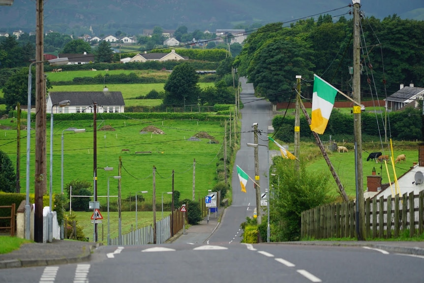 Irish flags are dotted along a road in a town on the Irish-British border, with houses and green fields in the background.