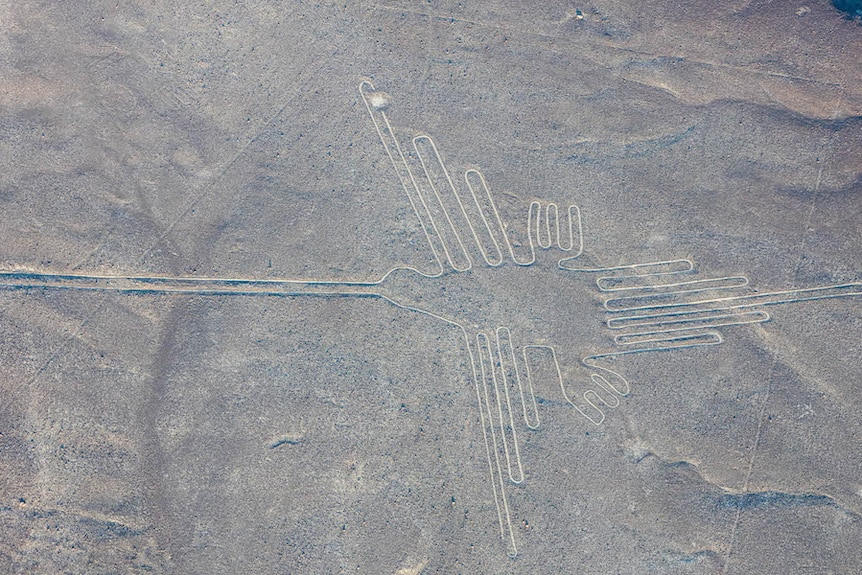 An image of a hummingbird, almost 100 metres in length, at the Nazca Lines.