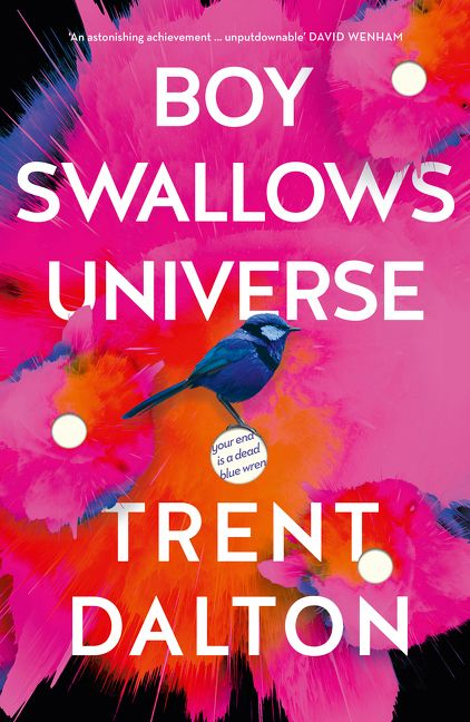Boy Swallows Universe by Trent Dalton book cover featuring a blue wren in front of a colourful background with white holes
