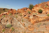 A rock cliff in the Dresser formation in the Pilbara