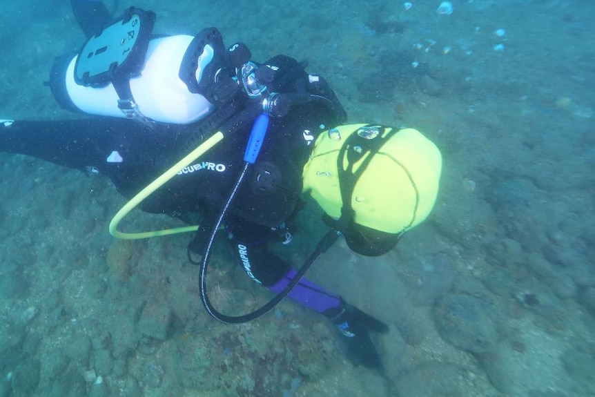 A diver scouring the sea bed for artefacts