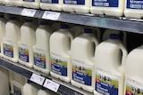 Bottles of generic milk in supermarket.