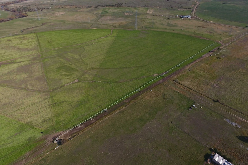 An aerial view of an irrigation pivot circles in Bothwell in Tasmania's Central Highlands