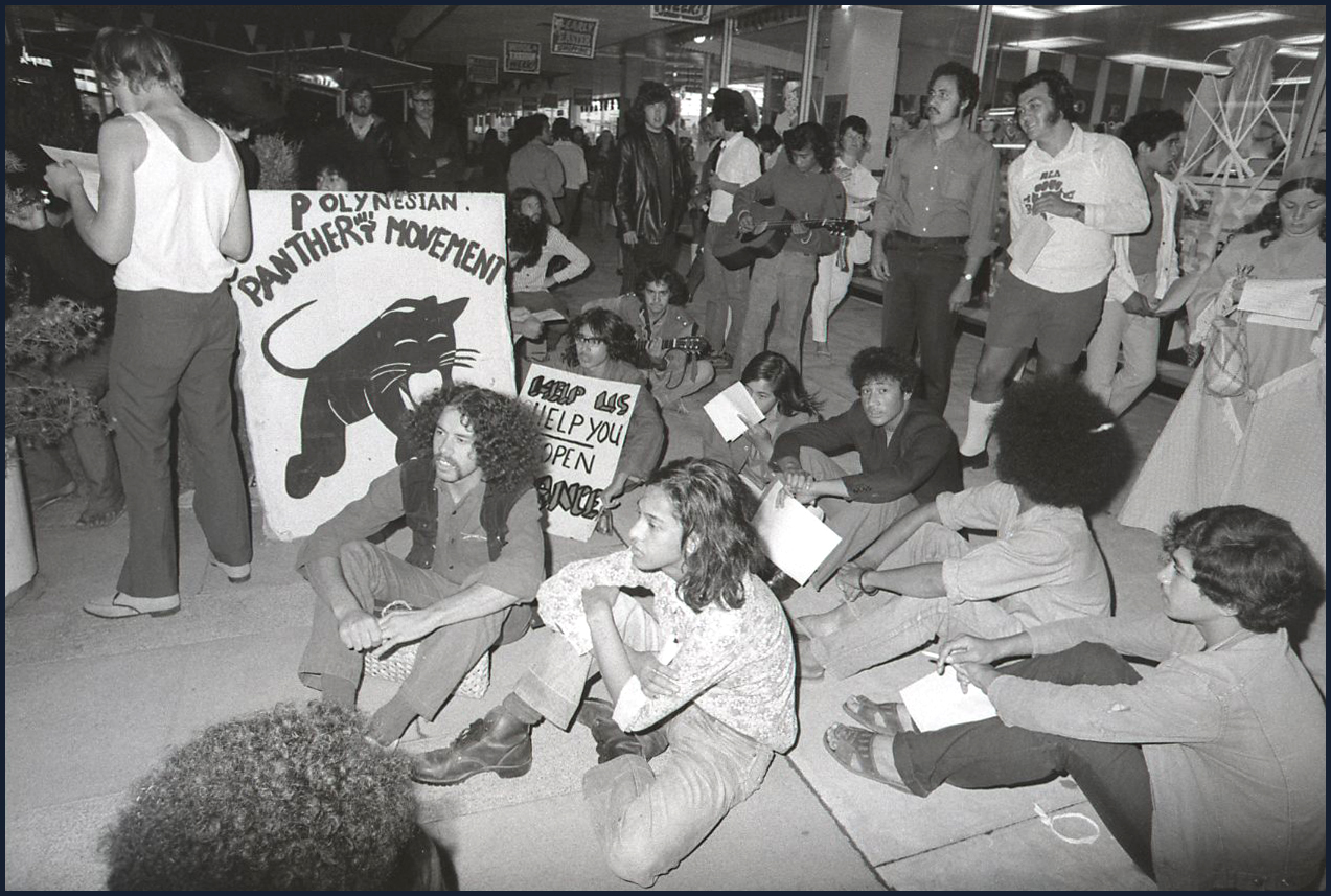 A group shot of protesters sitting on the ground around a Polynesian Panthers sign.