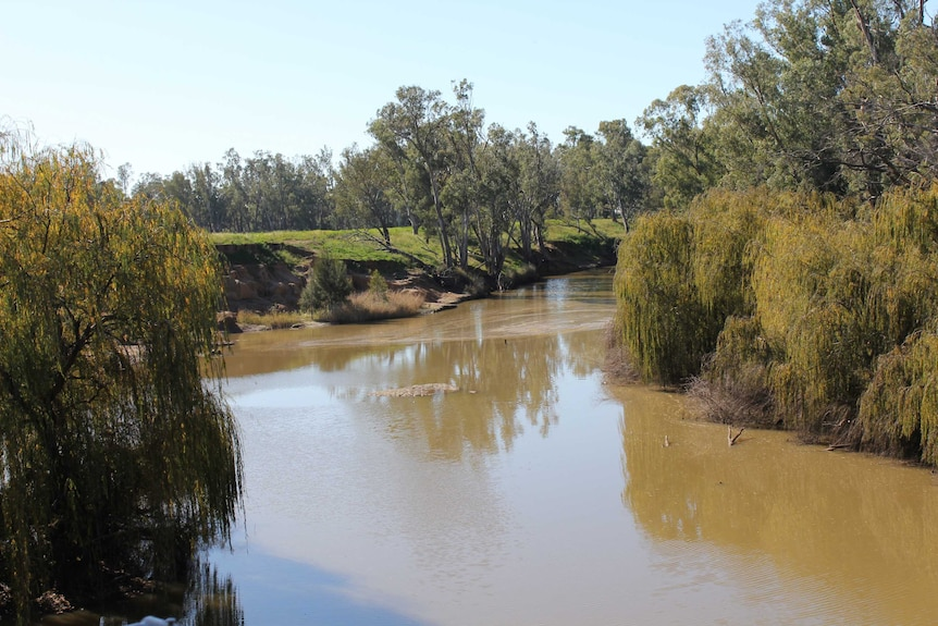 Photo shows the Macquarie River.